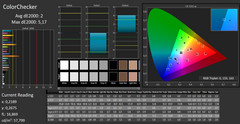 CalMAN ColorChecker (calibrada)