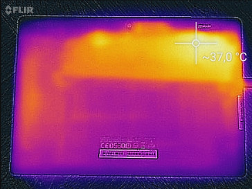 Heatmap Back