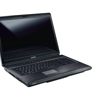 Toshiba Satellite L355D Drivers Update
